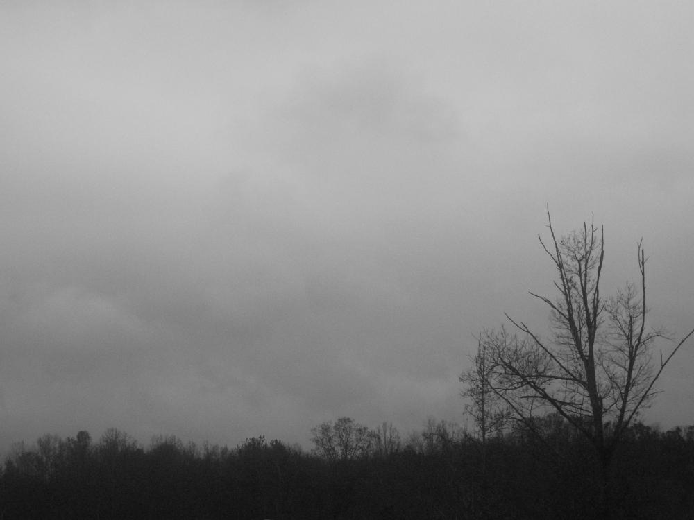 Black White Gray Blue Room