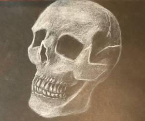 03 Skull