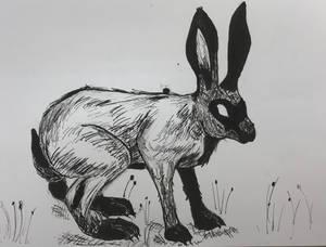 04 Psycho Hare