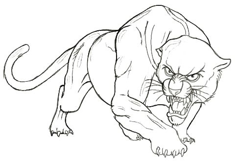 How To Draw A Panther Head And Face in addition 40 Black And White Tattoo Designs further Dibujo De Panteras CKdAoao7L likewise ワシ 10996496 also Thing. on simple panther drawing