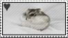 dwarf hamster love by Queer4Barbie