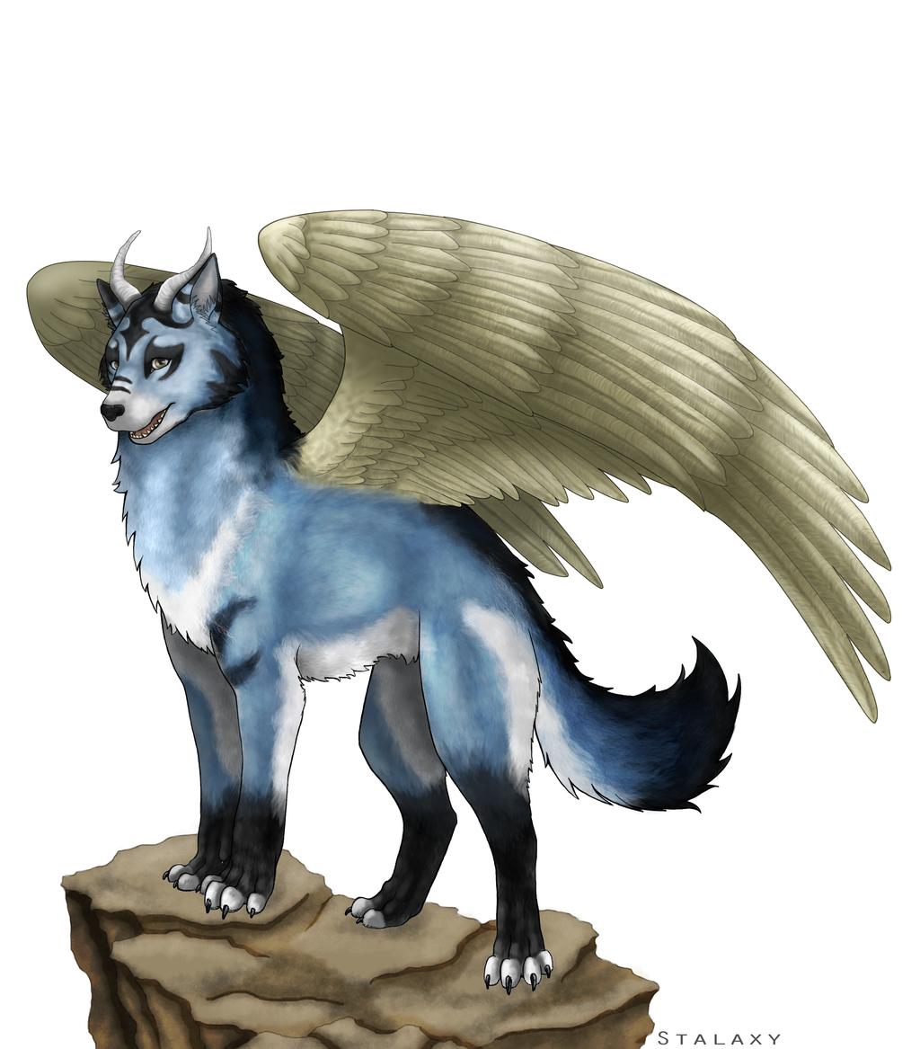 Winged Wolf by Stalaxy on DeviantArt