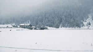 A distant cabin in a snowy field