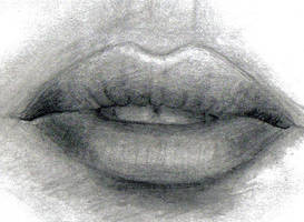 Megan Fox's Lips by Arikaiden