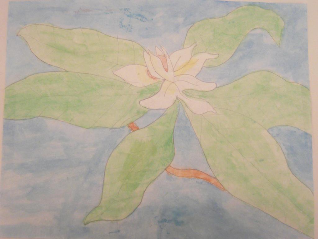 Louisiana state flower by GypsyBling17 on deviantART