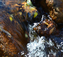 Water. Fall.