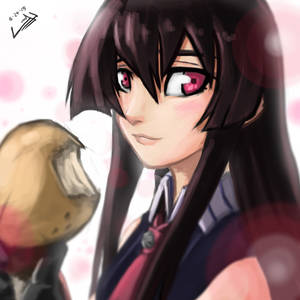 Akame by wtfisalinh