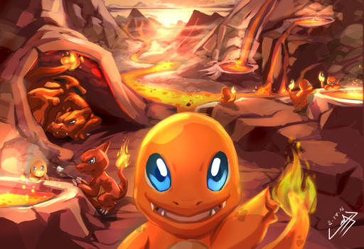 Welcome to Charmander Stove