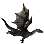 E-S Dragon II Darkness