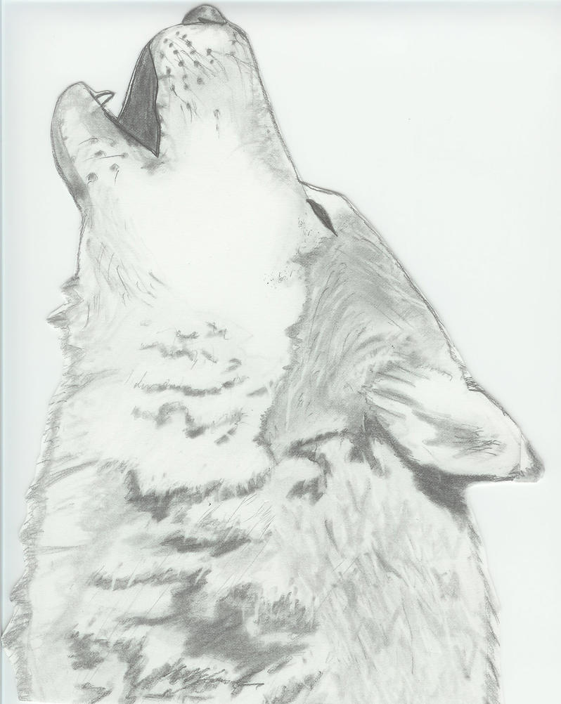 Howling Wolf by Sea-of-Ice on DeviantArt