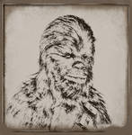 Chewie - A new Hope -