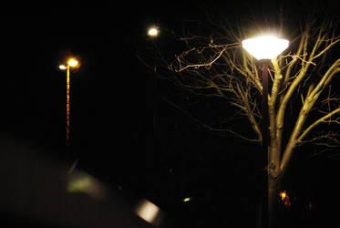 Streetlights in winter