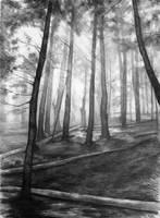 soothing place by Katarzyna-Kmiecik