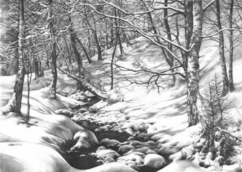Winter Wonderland by Katarzyna-Kmiecik