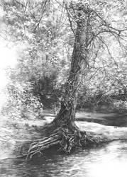 Fairytale tree by Katarzyna-Kmiecik
