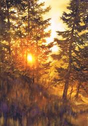 Golden Sunset Trees