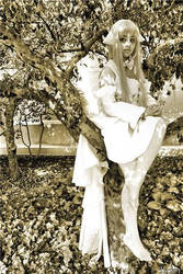 Chii in the Tree