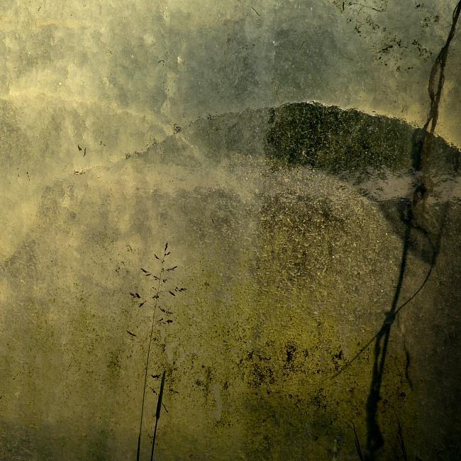 The Sunken Meadow by Versatis