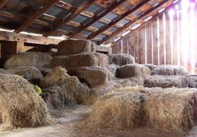 Barn Loft 2 by da-joint-stock