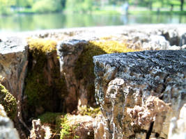 Lillipucian Cliff 3 by da-joint-stock