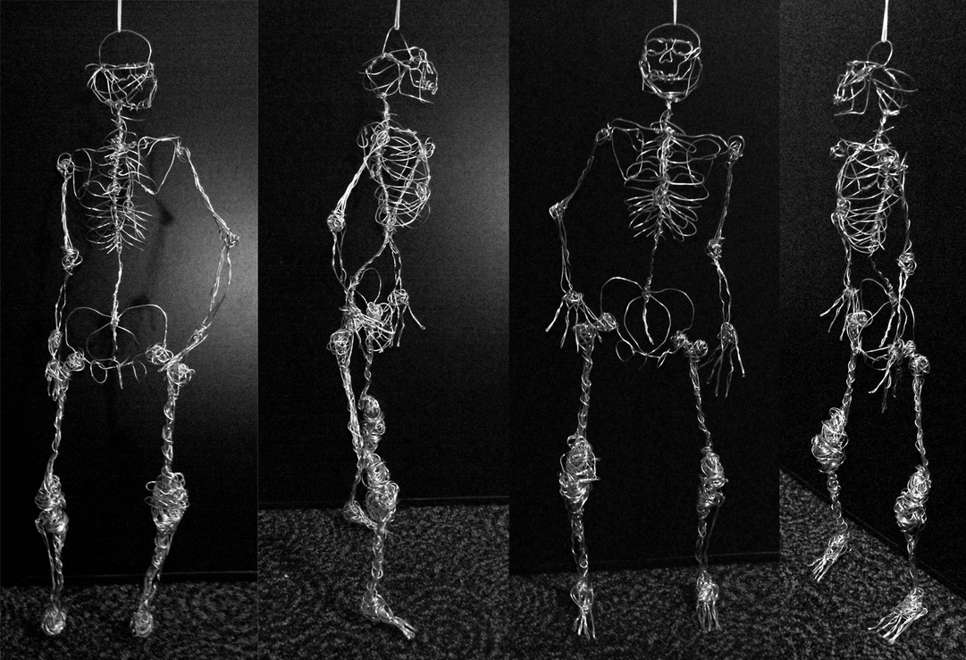 zinnia the wire skeleton by blique on deviantart
