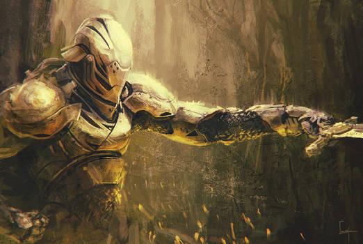 Armor Pose
