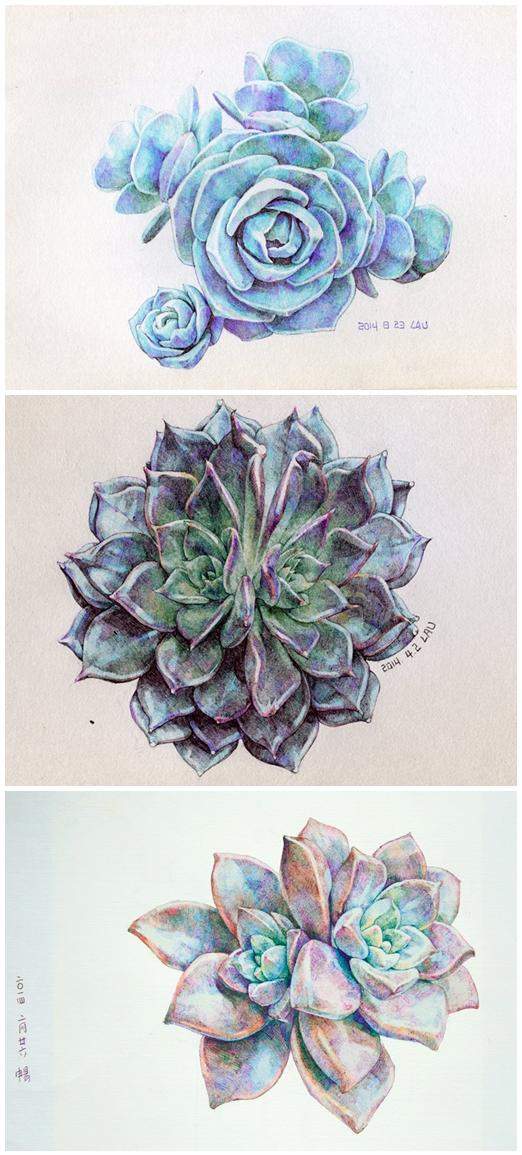 ballpen series:Succulent plants by hosanna9