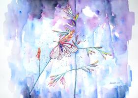 Little butterfly in a meadow by ericadalmaso