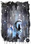 Black kitty in the night
