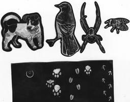 College work illustrations