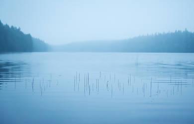 The Twig Lake