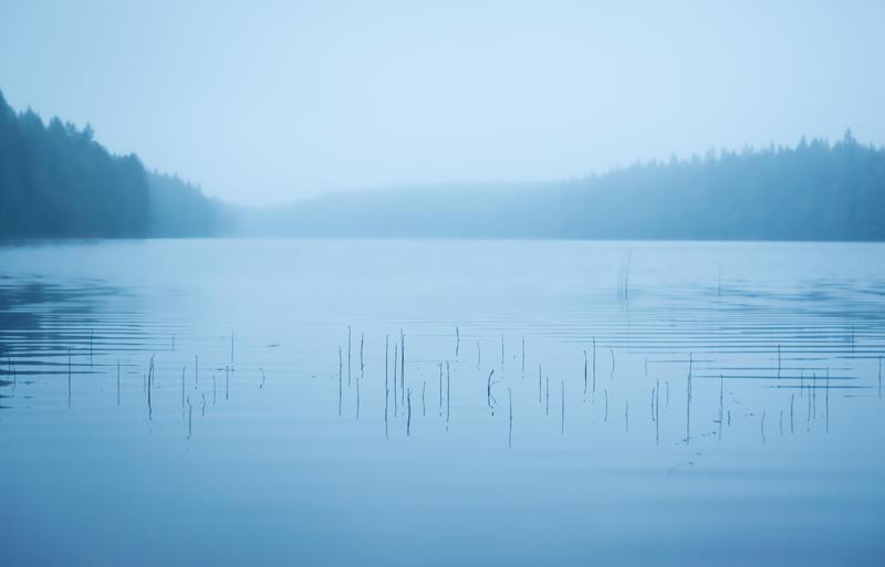The Twig Lake by IdaBarracuda