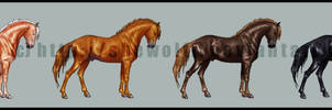 Preview - horse color chart