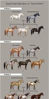Equine Coat Color Quiz v.2