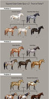 Equine Coat Color Quiz v.2