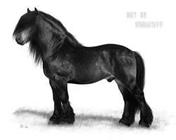North Swedish Drafthorse