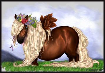VHR - Angelic Almond Pony by SheWolff