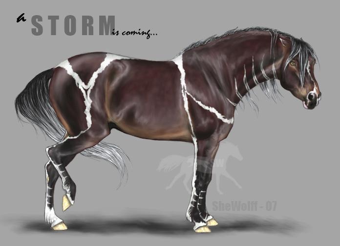 storm éclair Equine_character___Storm_by_SheWolff