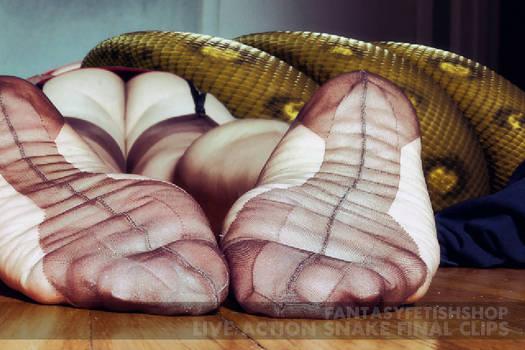 Sexy Cuban Heel Stockings Meal (13)