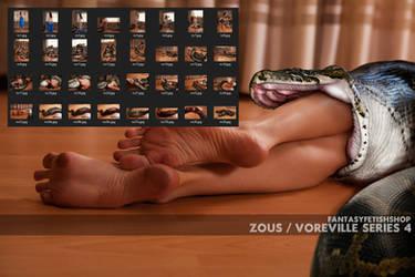 ZOUS VOREVILLE EXCLUSIVE SET 4 COLLECTIBLE