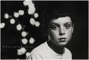 Midnight Fireflies by CameraDude