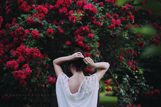 Natalia and the wild roses