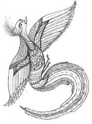 bird from heaven