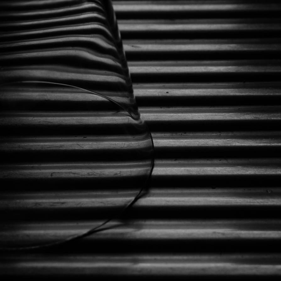 Black and white 1 by DeepSleepAdventurer