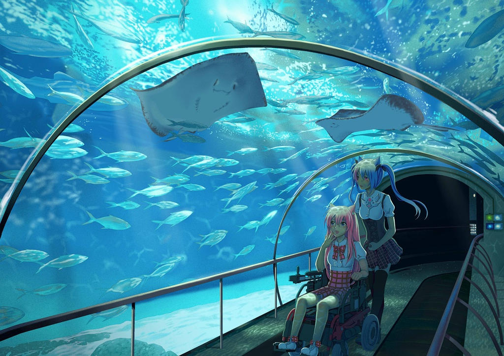 Aquarium by airibbon