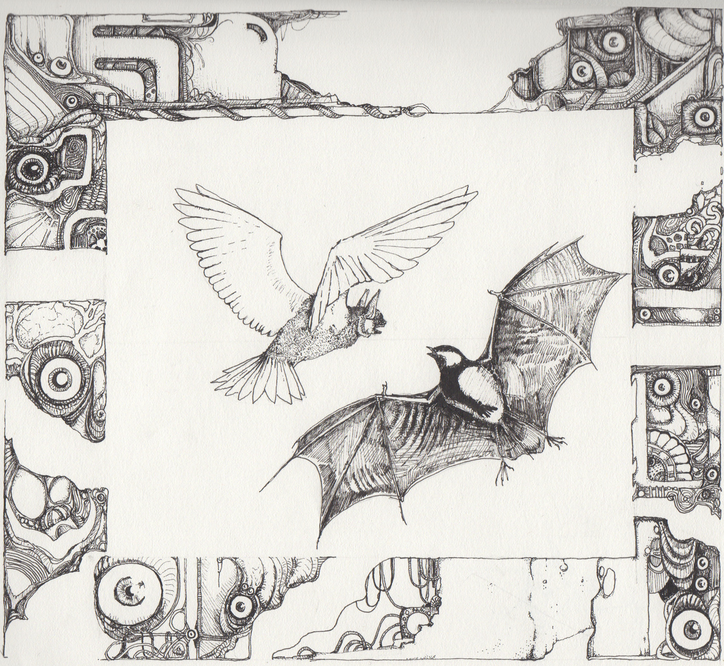 [Image: bird_and_bat_by_zemie-d8nha6l.png]