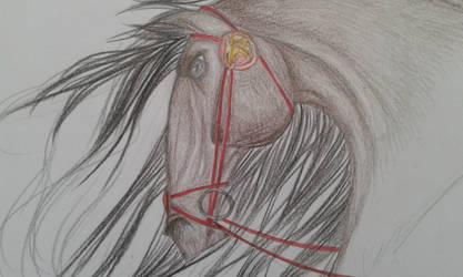 War Horse by ScorpionFlower24