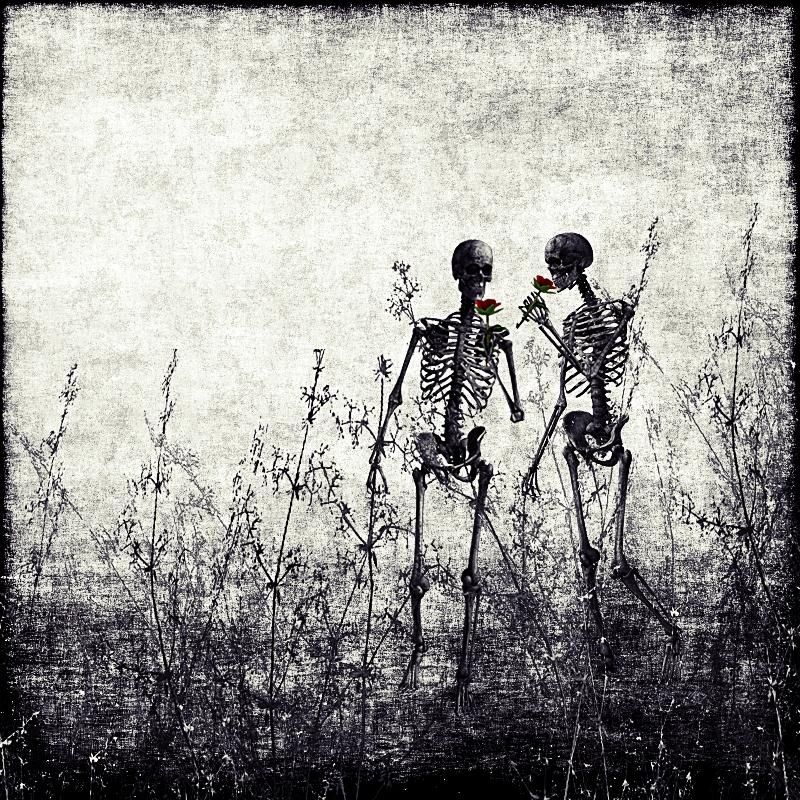 best friends by CosmicKat