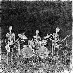 Rock and Roll never dies- meet the band