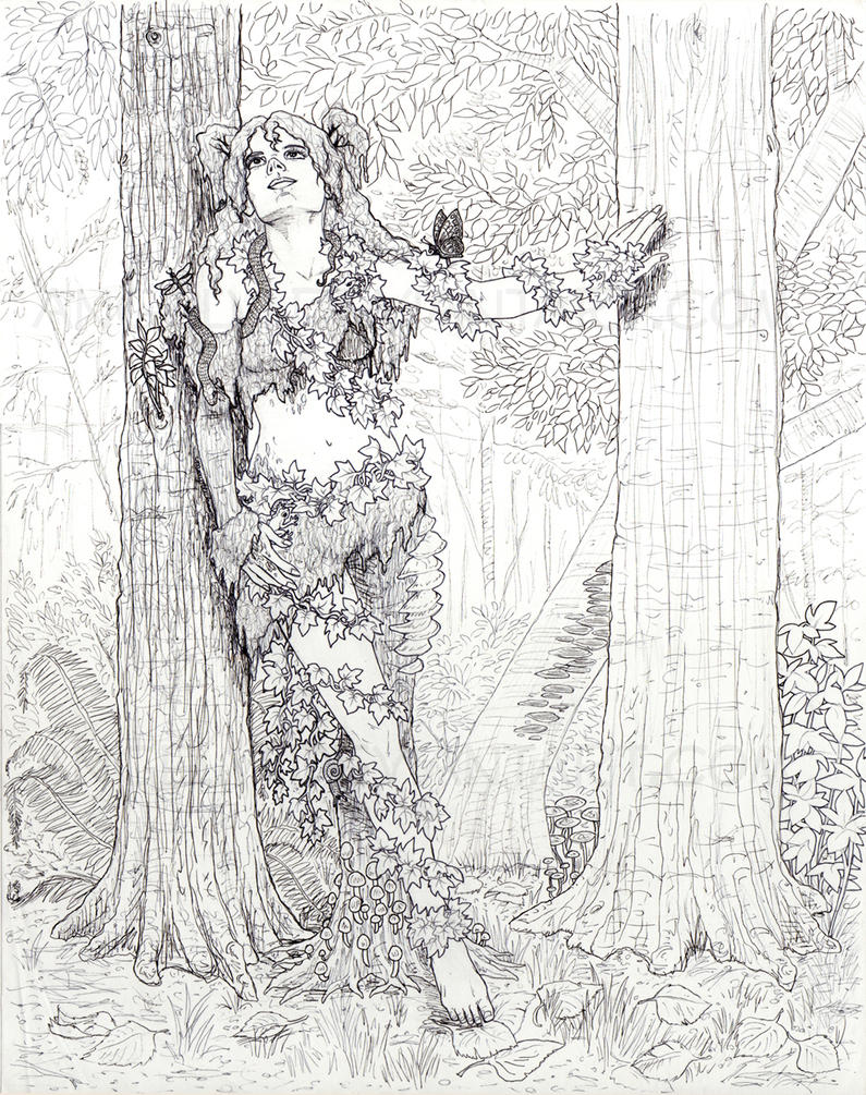 Line Art Forest : Dryad in the forest line art by angelvi on deviantart